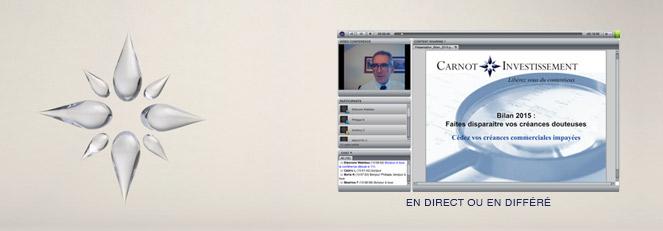 Webconférences Philippe Naudin